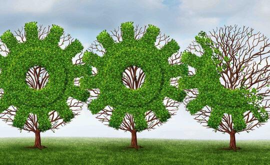 Understanding-and-Adopting-ESG-Part-II